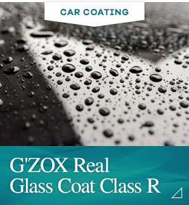 New real Glass coat